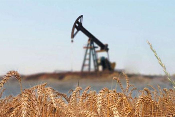 Балансировка рынка нефти затянулась - новак