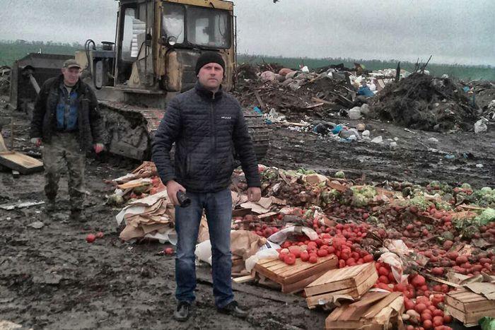 Дожди в ростовской области не повредили поля зерновых