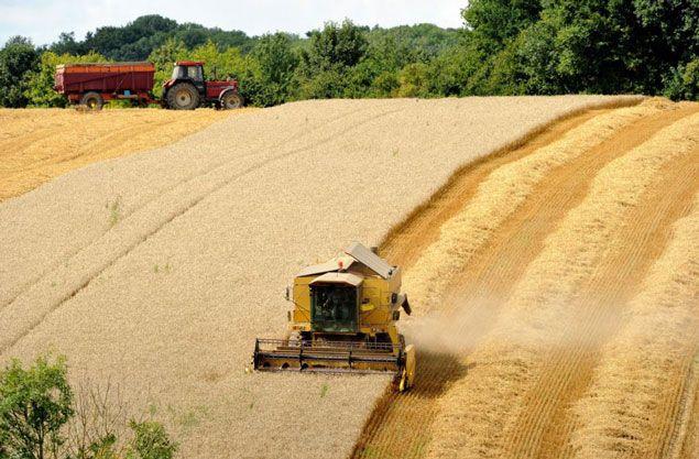 Фьючерсы на сою и кукурузу понизились на прогнозах погоды в сша