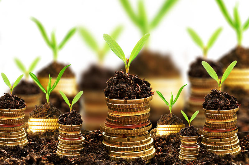 Где можно инвестировать деньги