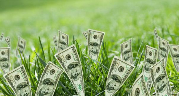 К чему приведёт рост доллара? рост доллара: прогнозы, последствия