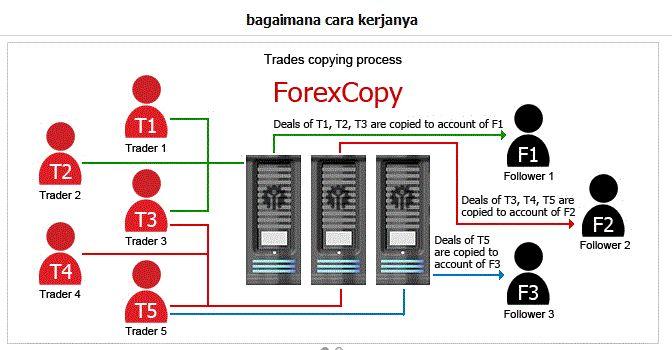 Копирование сделок трейдеров на форекс — через сервис share4you. список стратегий