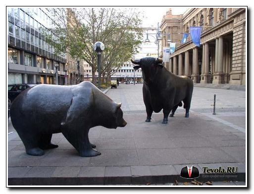Кто такие быки и медведи на бирже