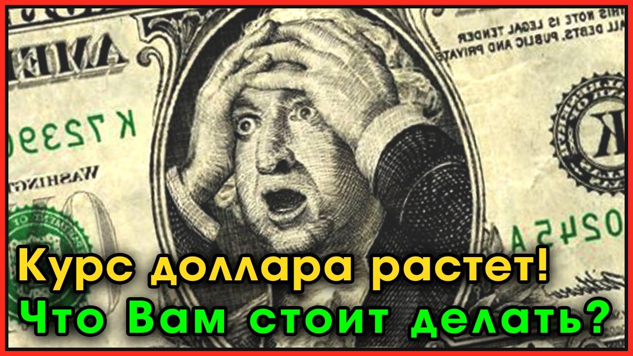 Почему падает курс евро в казахстане