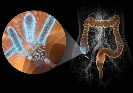 Восстановление кишечника, печени, организма, иммунитета после антибиотиков